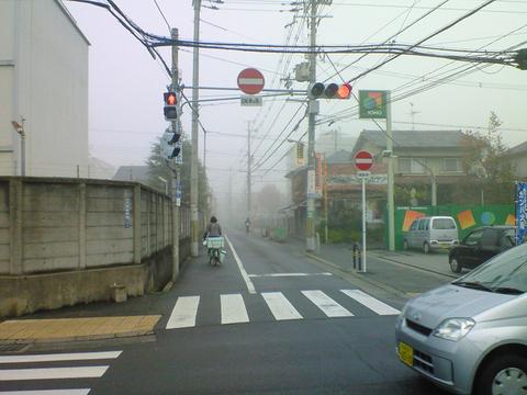 Pic20081210